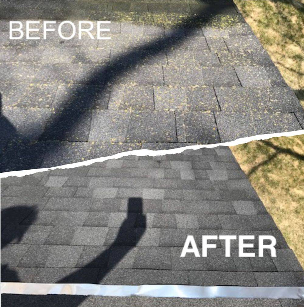 Roof Moss maintenance