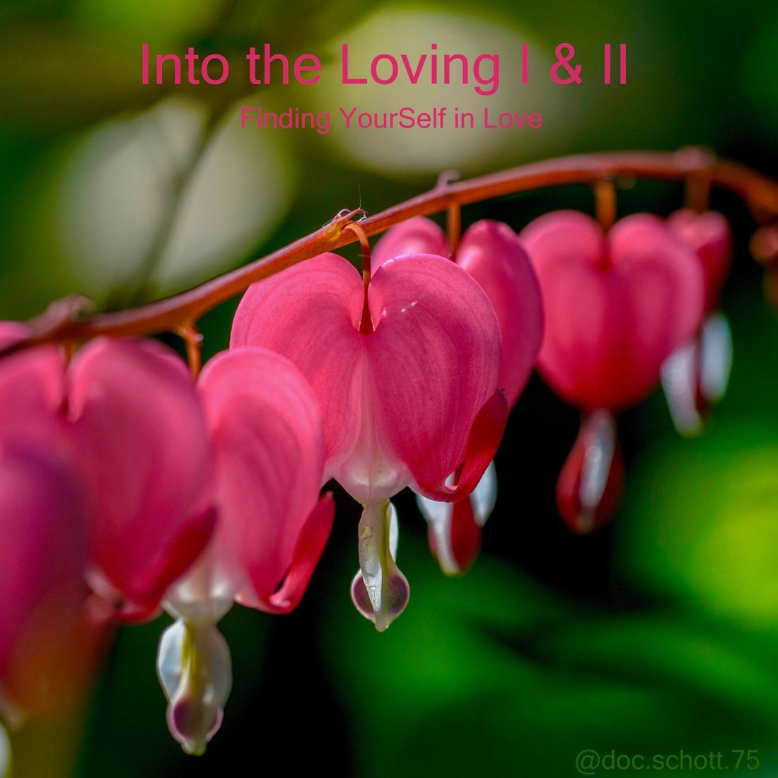 'Into the Loving': a program on self-love, self-acceptance, heart coherence, heart-centered living, and claiming Love as a way of life.