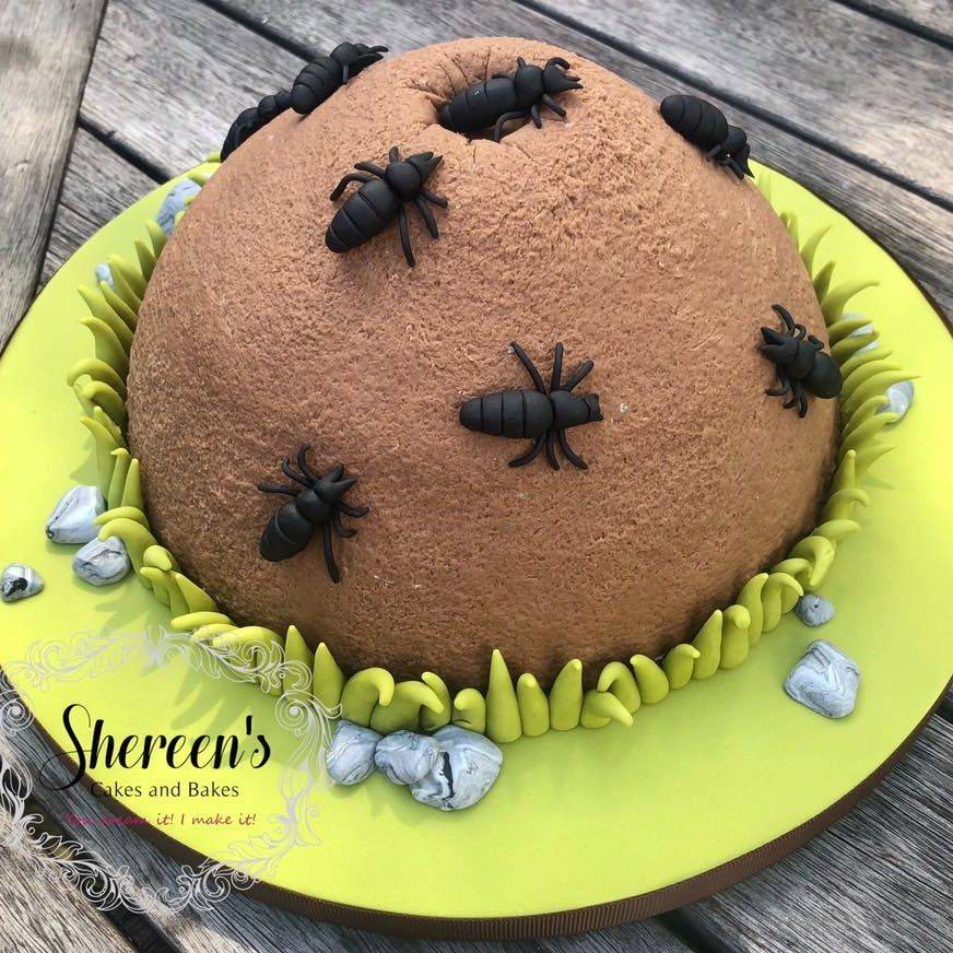 birthday cake ant hill farm ants bugs insects