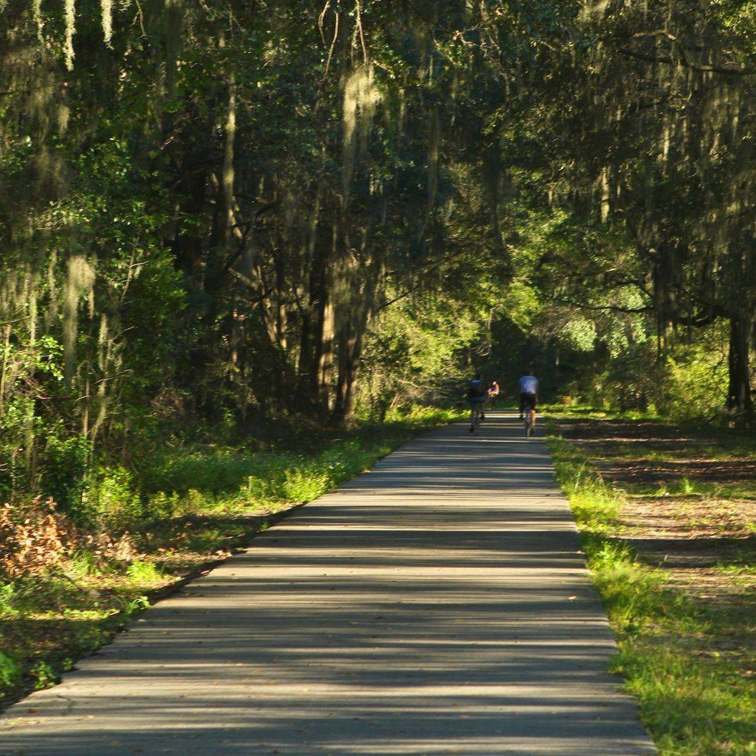Hawthorne Trail - Rails to Trails - Gainesville, FL