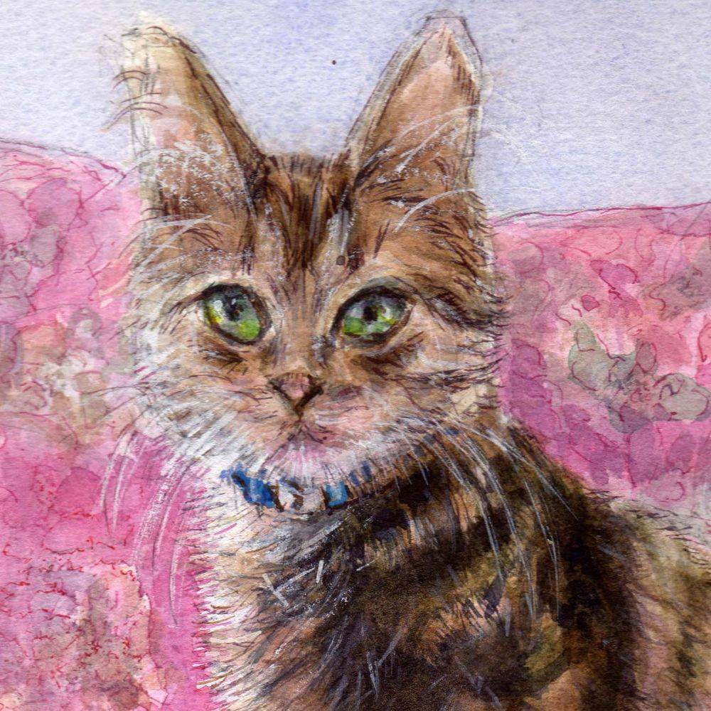 Cat watercolour painting by  Marcia Kuperberg
