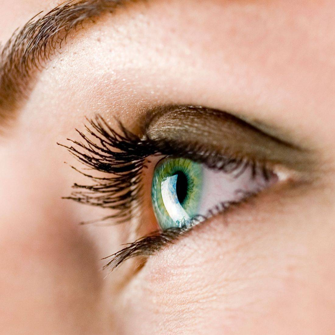 eyelash extensions bainbridge island