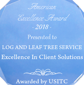 Best tree service in Birmingham 2018