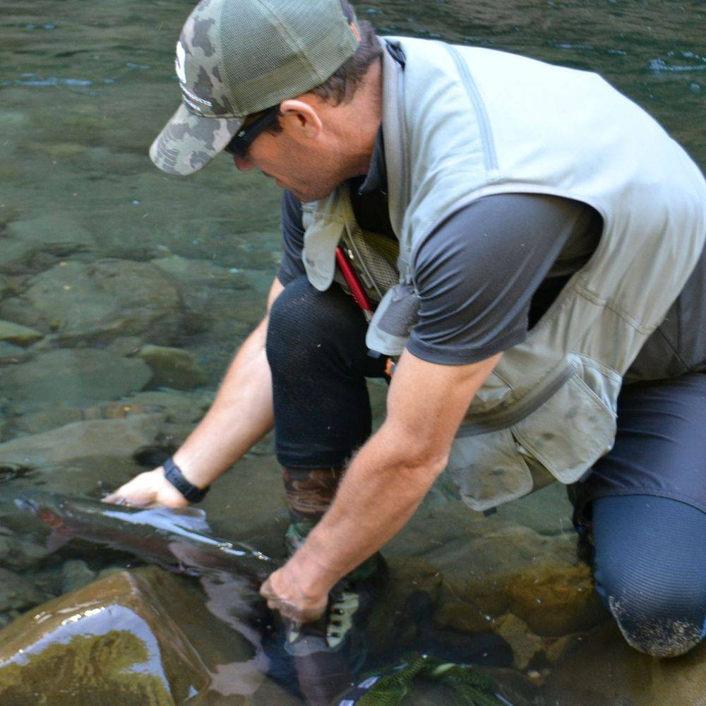 Guided Trout FishingTrout Fishing Lower North Island New Zealand