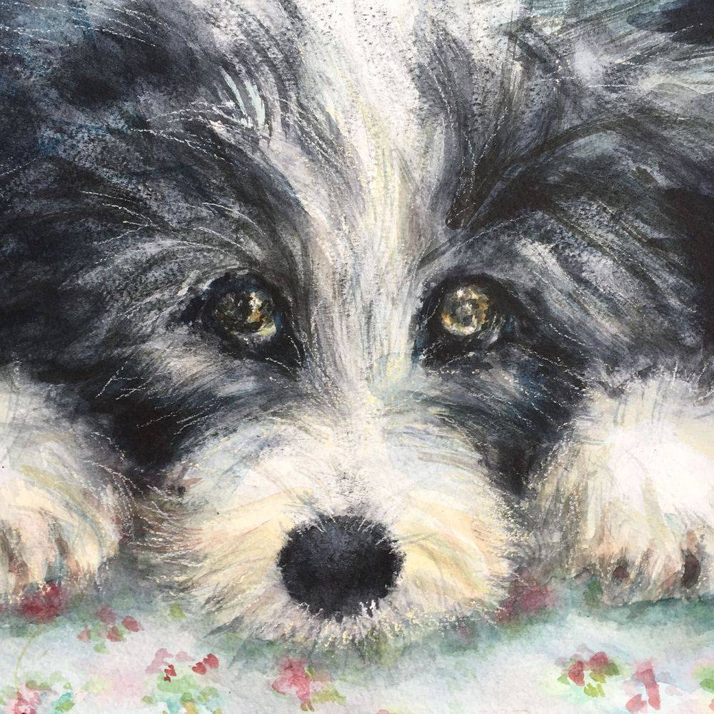 dog watercolour painting by Marcia Kuperberg