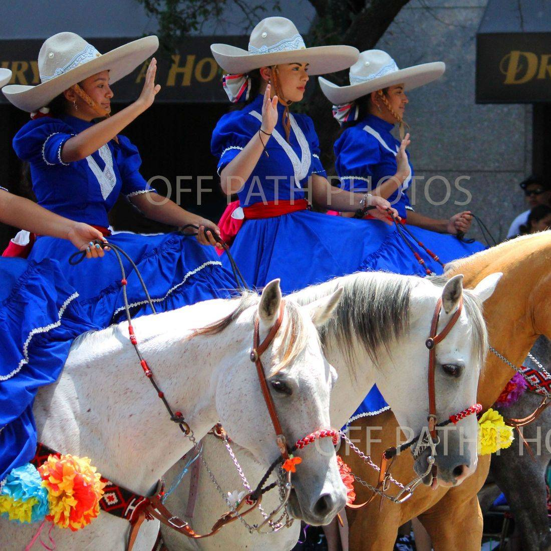 photography, fiesta, parade, horses, riders, people, San Antonio, Texas, fun