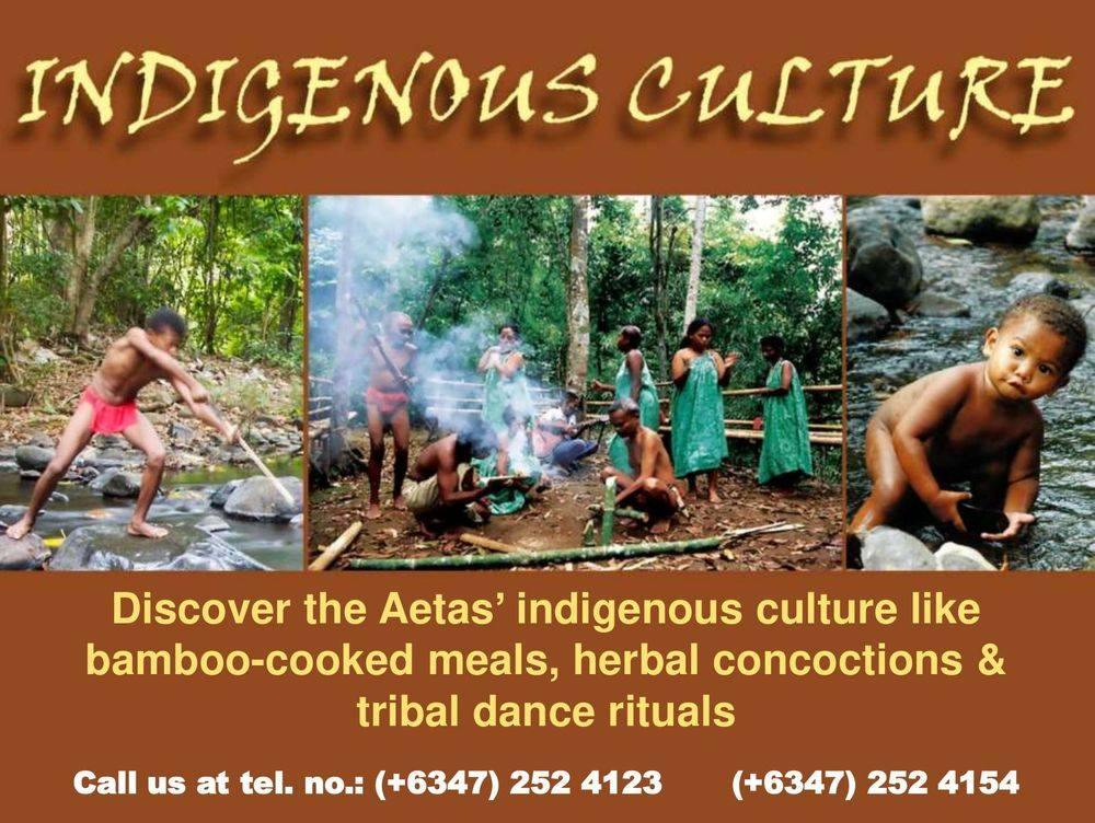 discover the aetas' indigenous culture , british & far east traders & partners, subic bay freeport zone philippines, invest in the philippines, holy land subic sanctuary and theme park, ocean adventure- southeast asia's only open water marine park, treetop adventure: the world's first motorized canopy tour, zoobic safari, funtastic park subic bay, subic bay ecotourism, apaliin forest trails