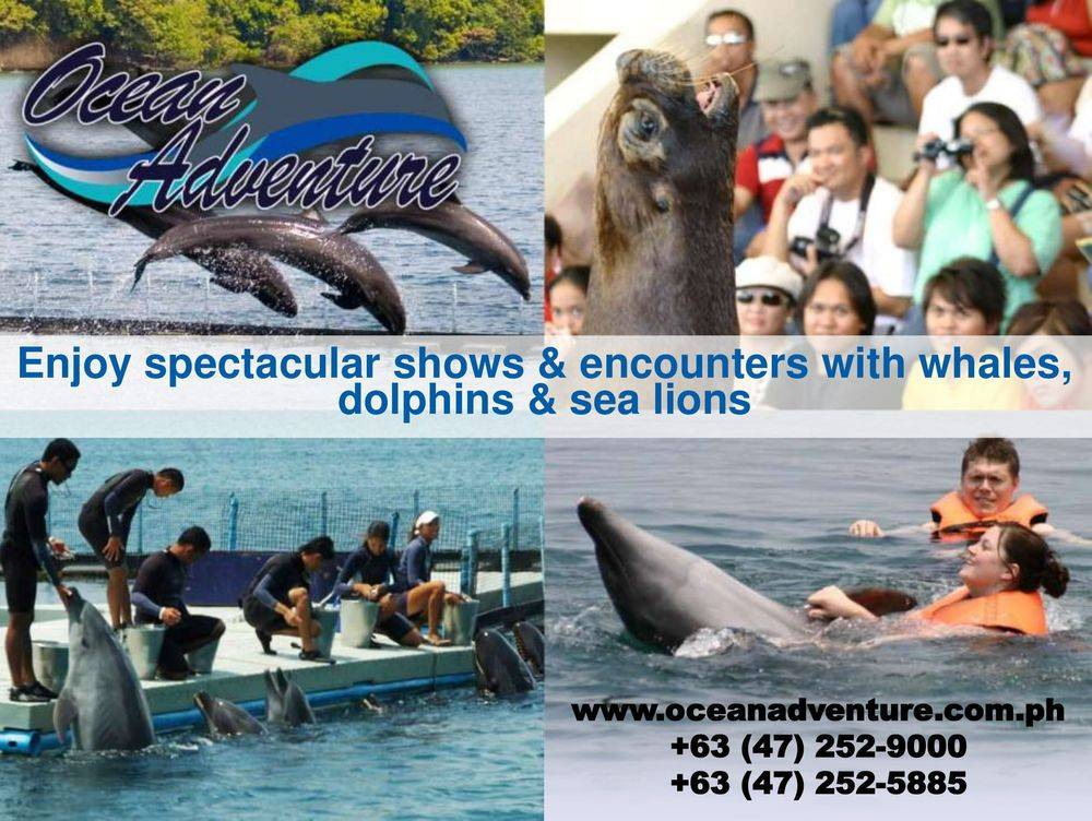british & far east traders & partners, subic bay freeport zone philippines, invest in the philippines, holy land subic sanctuary and theme park, ocean adventure- southeast asia's only open water marine park