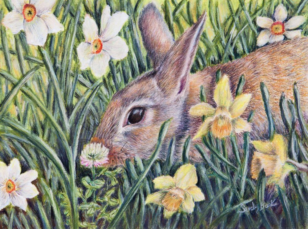 pastel illustration, pastel art, custom illustration, illustration artist, pastel artist, spring, rabbit, bunny, easter, daffodils