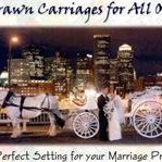 Bostoncarriagetours by elegant touch carriage company