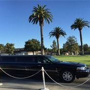 wine tours near me Napa Valley CA, wine tasting near me Sonoma CA, San Francisco CA, Transportation, private driver Chauffeur.