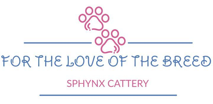 For the Love of the Breed Sphynx Cattery