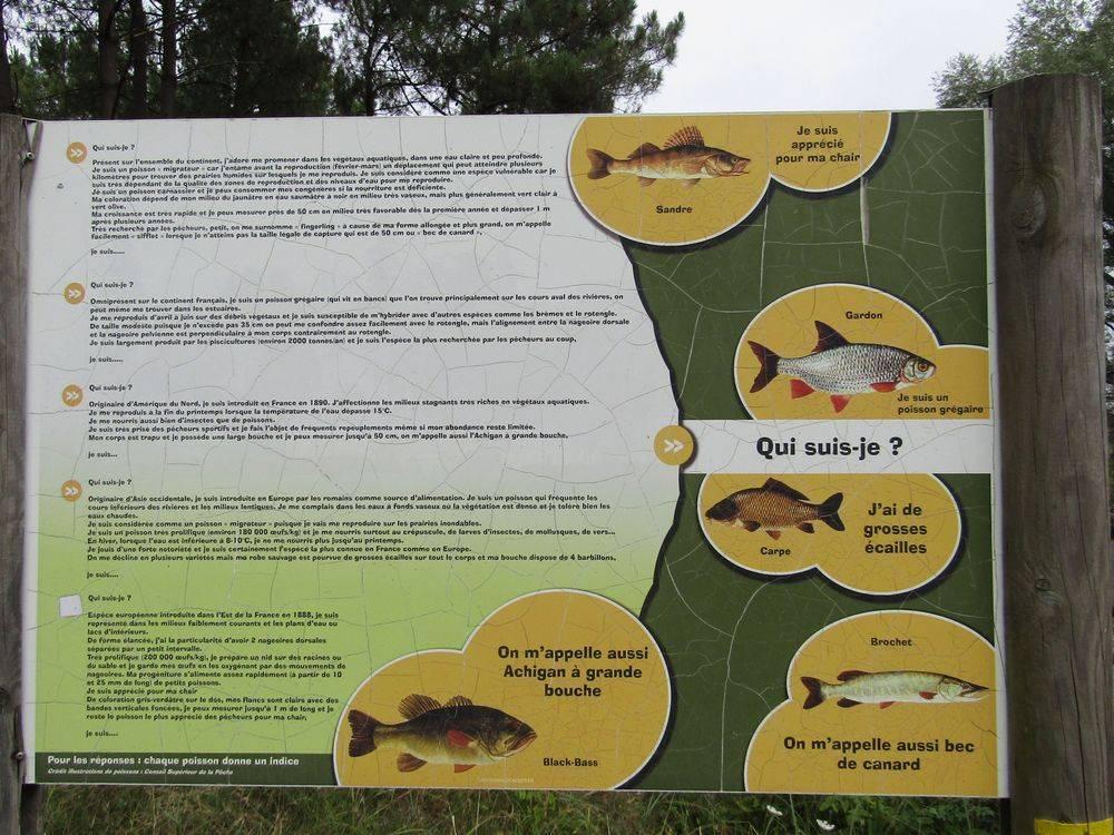 Gite nature du Tremblay en Touraine pêche lac de Rillé