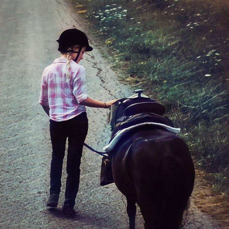 Horse pony ride