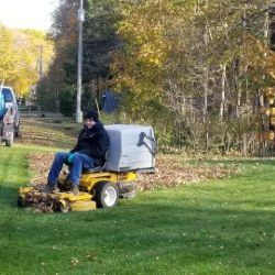 Fall Clean Up Servie
