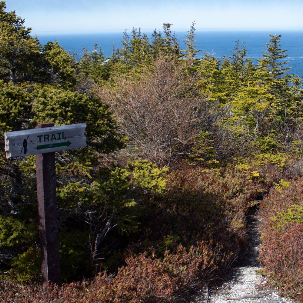 Biscan Cove Path, East Coast Trail, Pouch Cove, Newfoundland