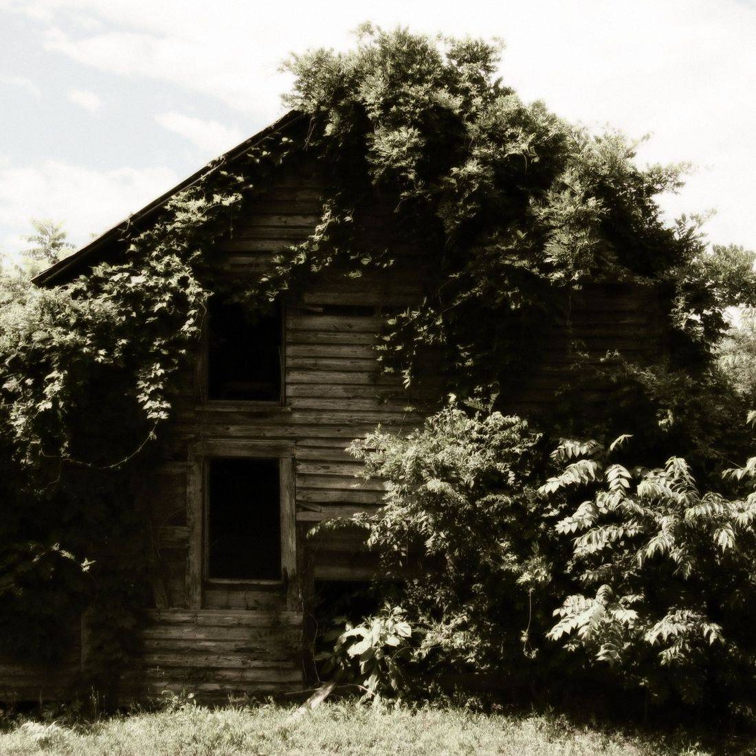 Countryside, Barn, Building, Old, Vintage, Outdoors, Trees, Farm