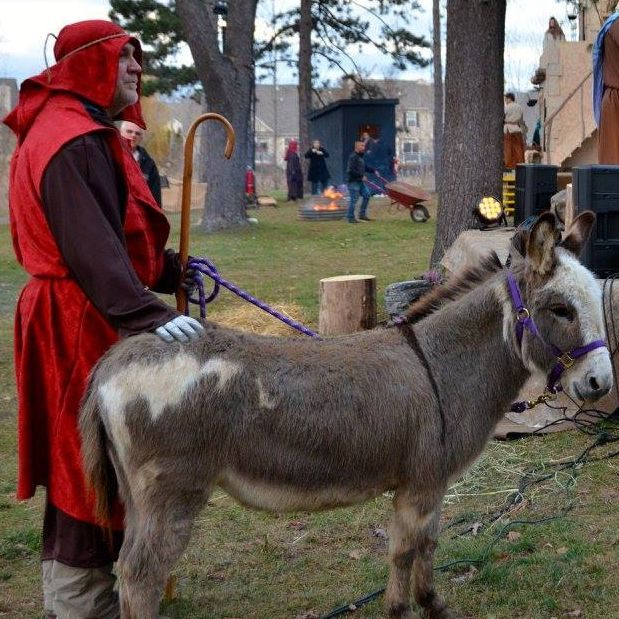 Man dressed as a shepherd holding donkey