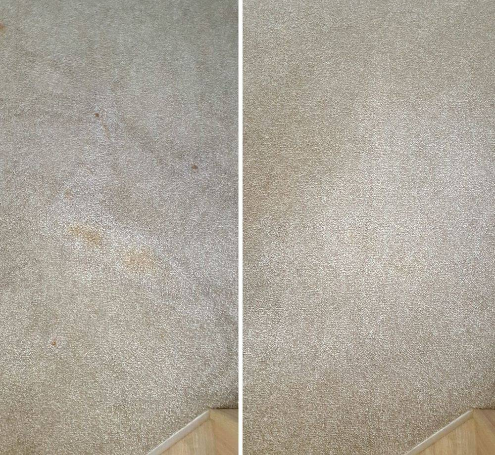Carpet Food Stain Removal