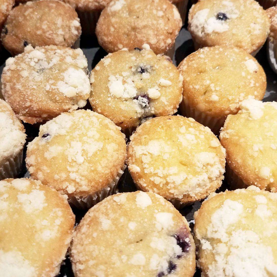 fresh muffins, blueberry, dessert
