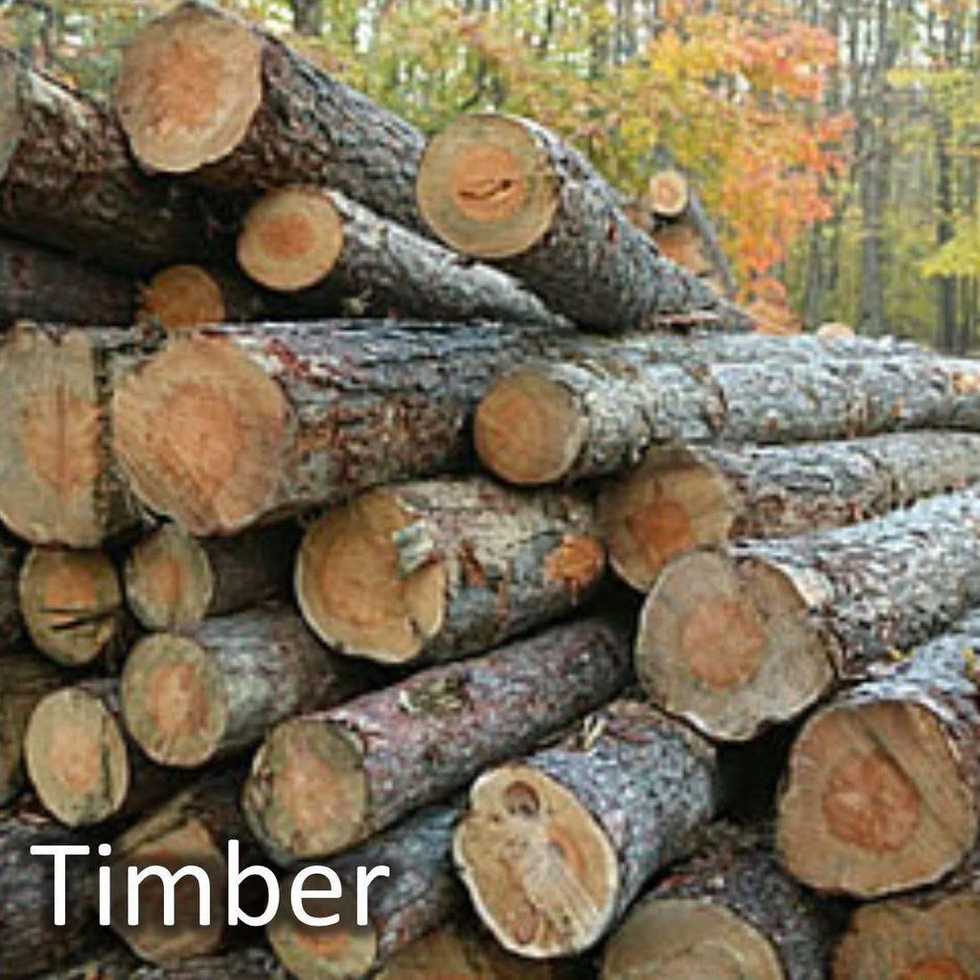 Timber, Lumber and Wood