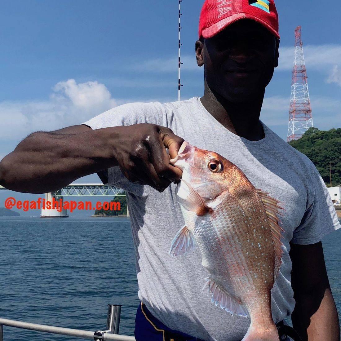 EGA.FISH.JAPAN 2015