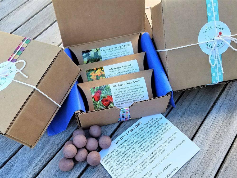 Sustainable Gift, Wildflower Gift, Green Gift, Unique Garden Gift