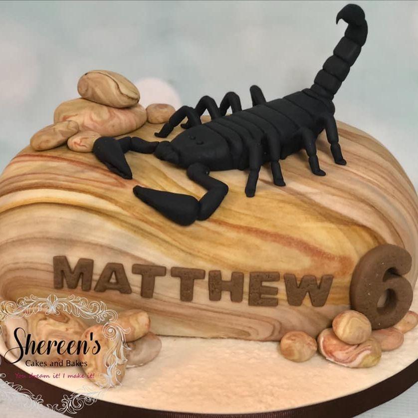 Scorpion Birthday Cake