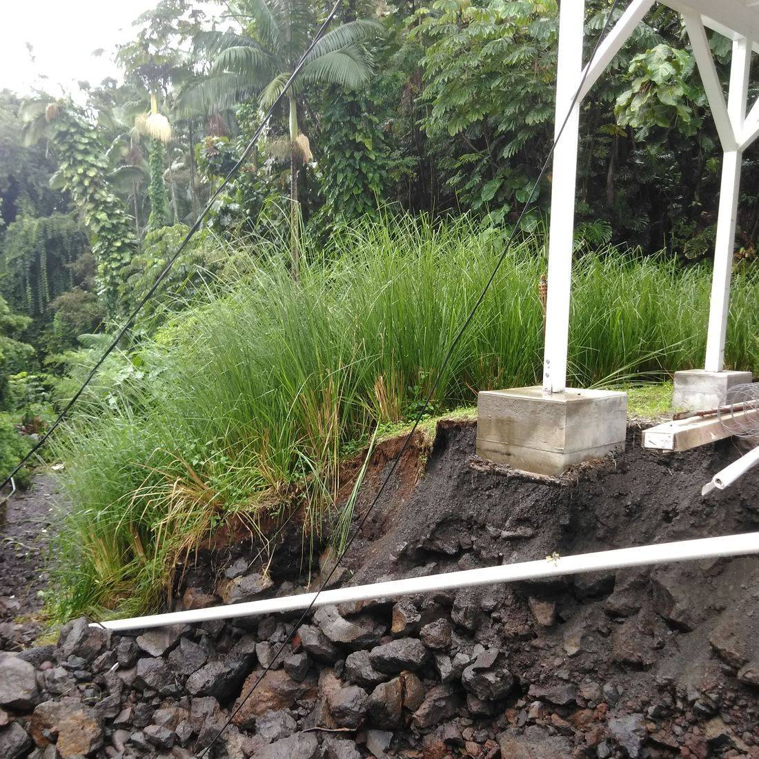 Vetiver System Retaining Wall