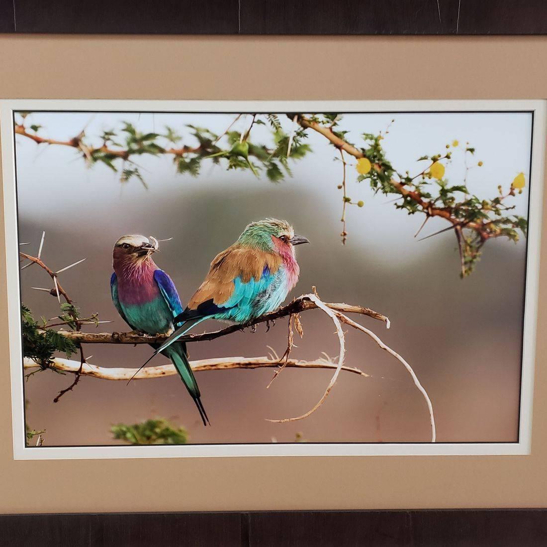 Sunset Framer oil painting custom framed