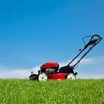 Simply The Best Professionally mows Lawns in Essex