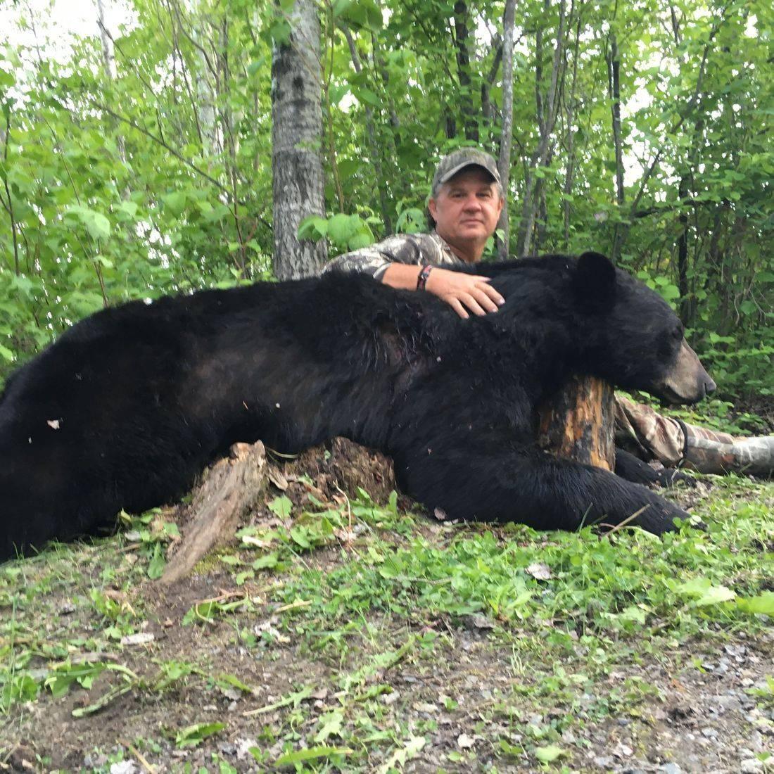 Manitoba black bear, black bear hunting, hunting, fishing