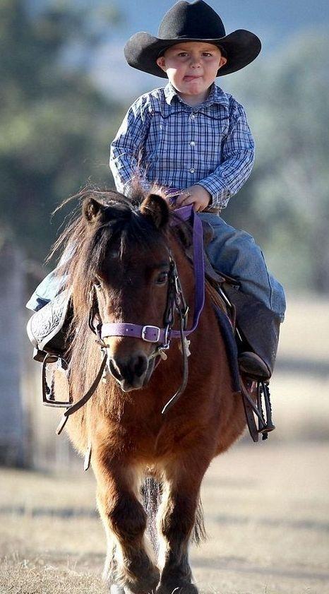 Pony blog
