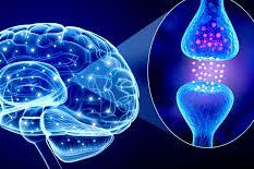 Orthomolecular Medicine, Orthomolecular psychiatry, alternative medicine, functional medicine, integrative medicine, holistic health
