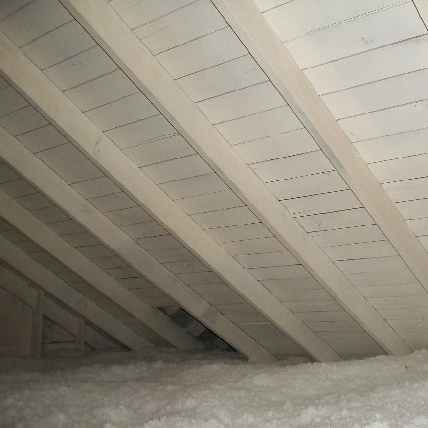 Mold Remediation- Attic Space