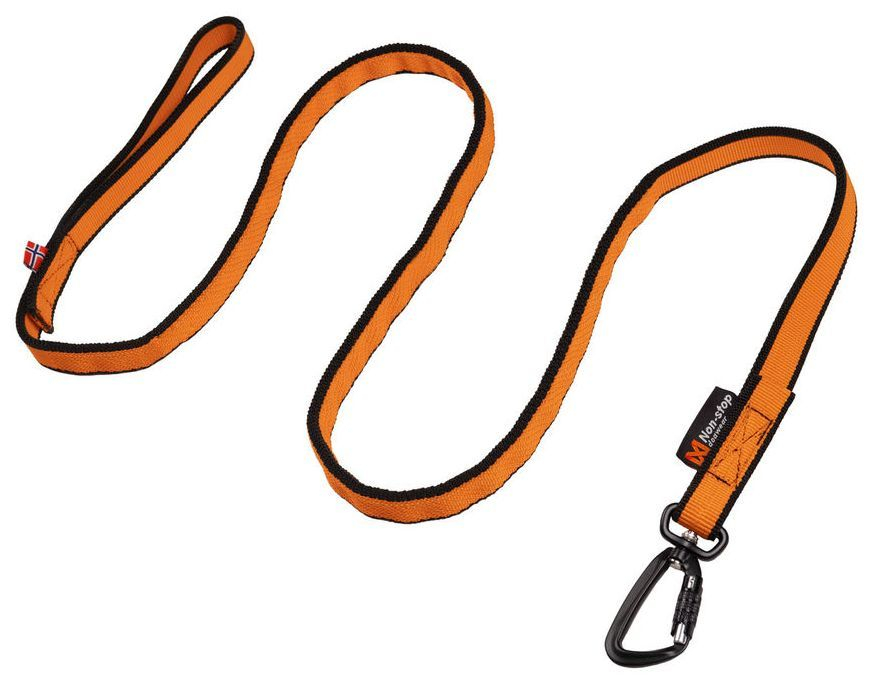 Non-Stop Bungee Leash