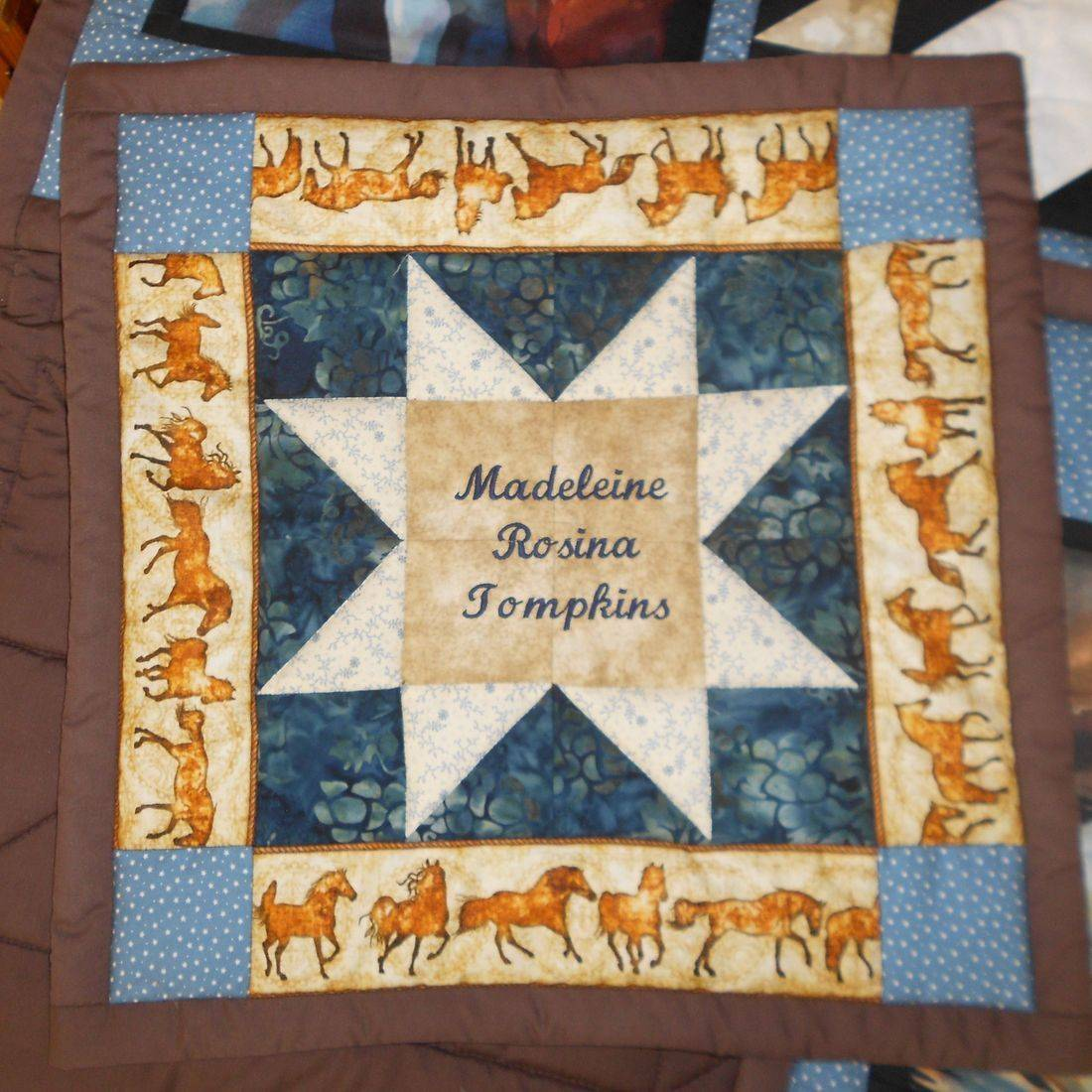 Sampler Cushion