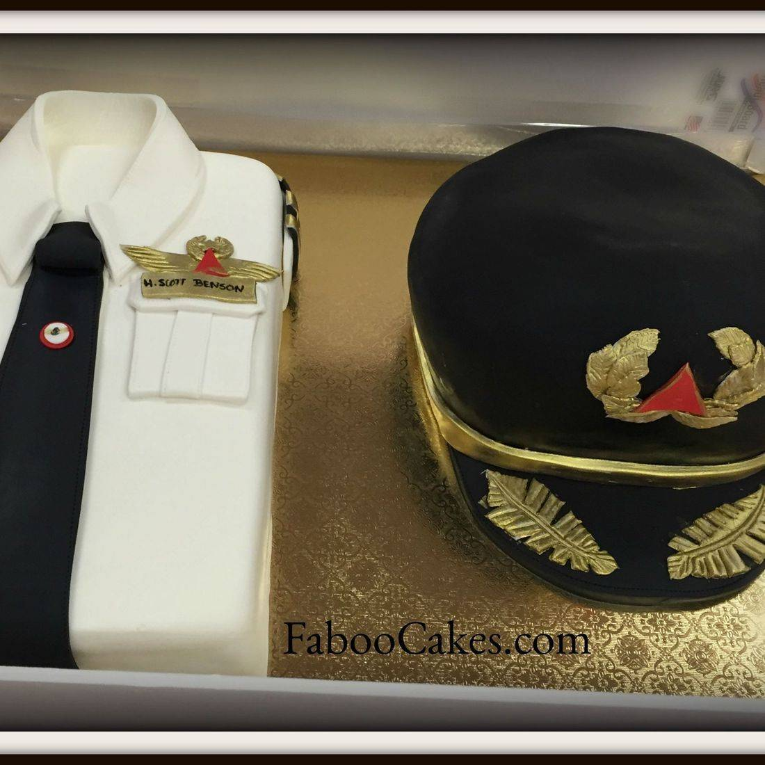 Airline Pilot Grooms Cake Cap and Shirt Airplane
