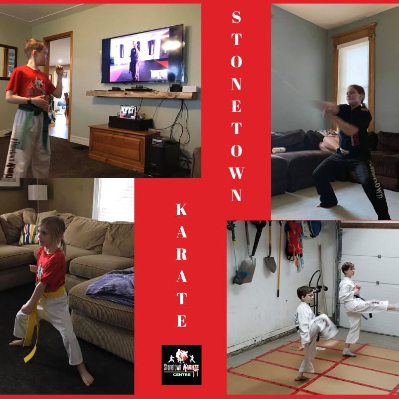 Virtual Online Karate and Cardio Kickboxing Classes