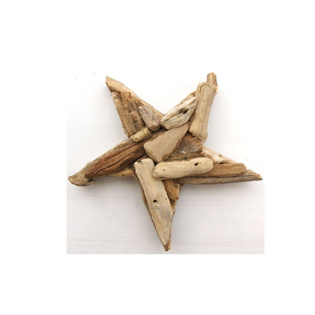 Fridge magnet driftwood starfish