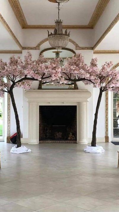 Blossom Tree Canopy Hire