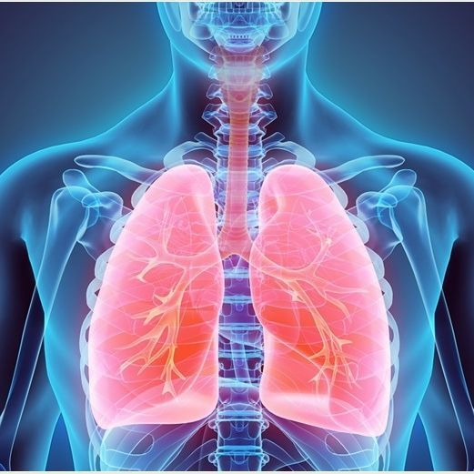 Exercise Specialist for Pulmonary Disorder (COPD) in Plymouth, Devon