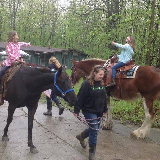 Pony back rides