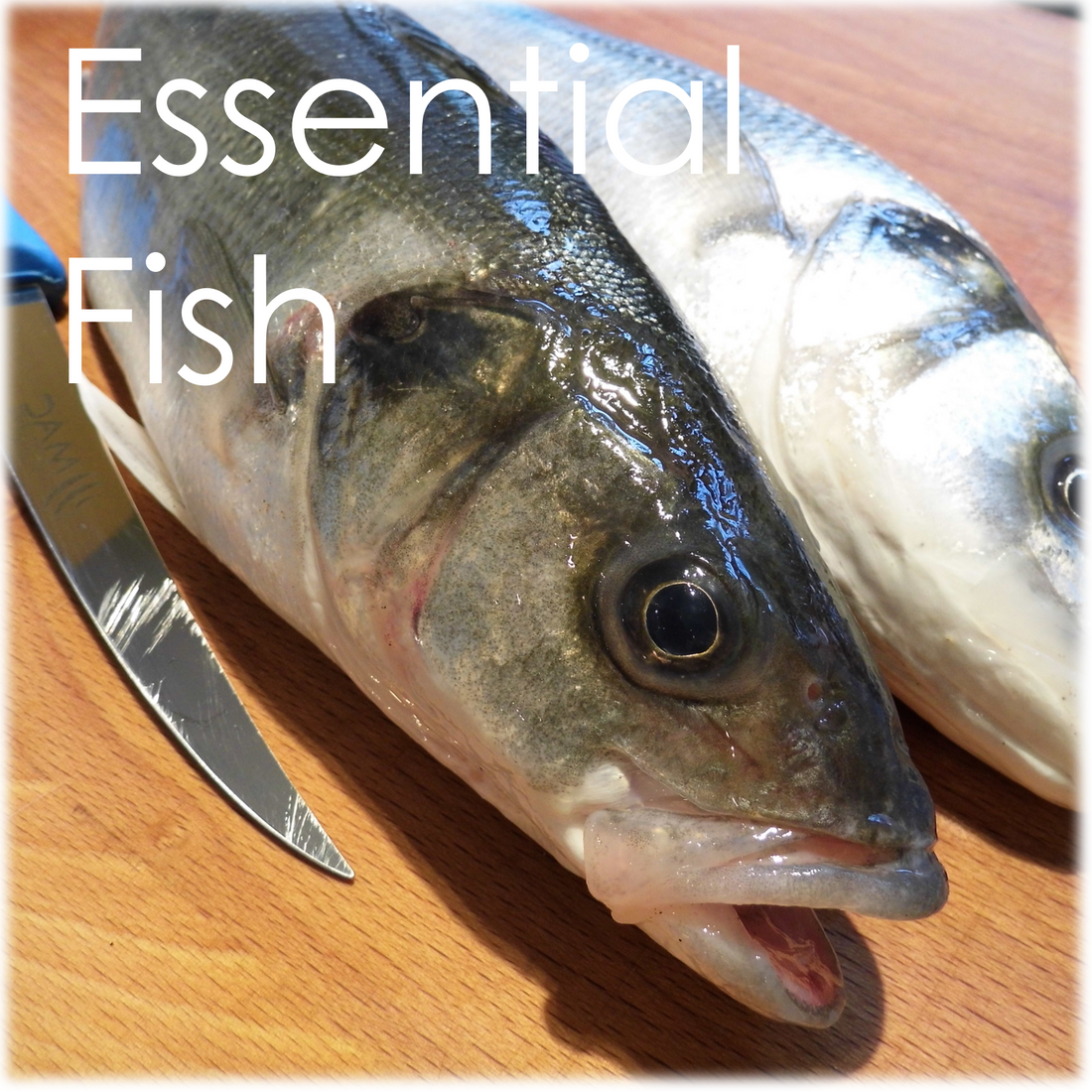 Fish cookery course, cookery course, Devon, South West, Cookery school