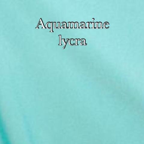Aquamarine lycra