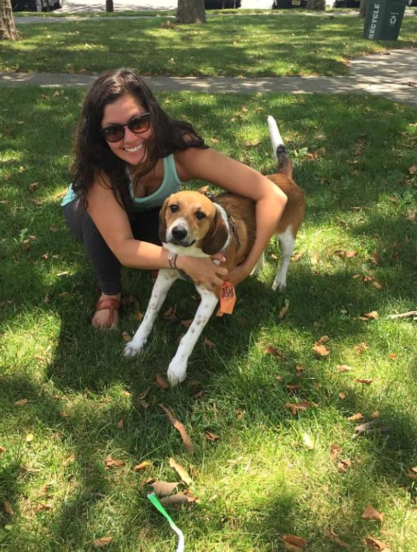 Dog walker smiling hugging a beagle dog on grass