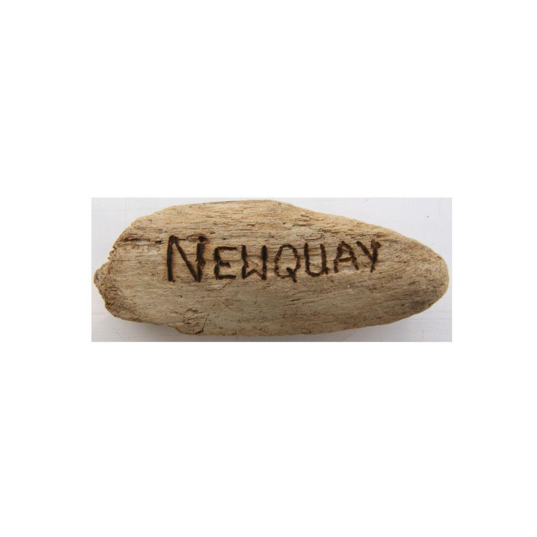 Fridge magnet driftwood newquay 1