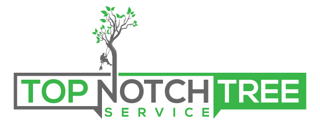Top Notch Tree Service, L.L.C