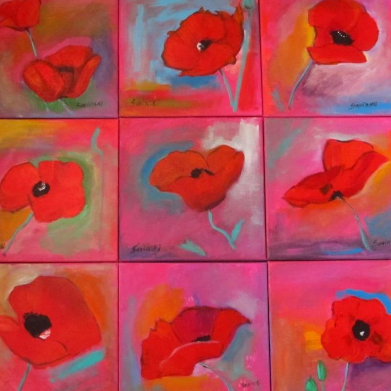 Poppies Various