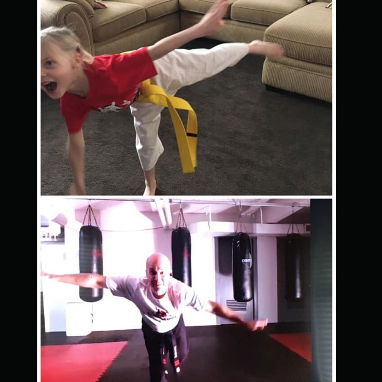 Virtual Karate and Cardio Kickboxing Classes